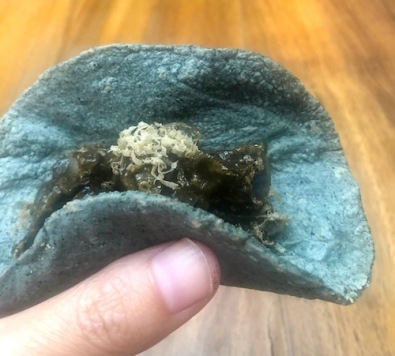 huitlacoche and black truffle in blue corn tortilla, Pujol